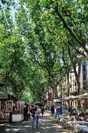Barcelona attractions: what to see and do in summer - Telegraph