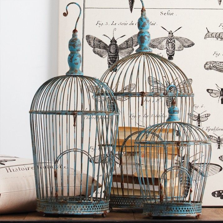 ♥ birdcages