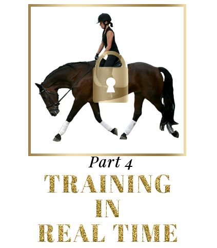 Course 01: Understanding and Mastery of the Basics | Dressage Mastery Academy | Your Riding Success