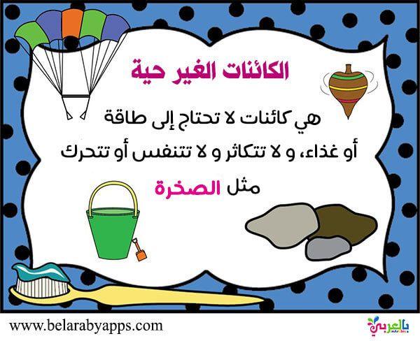اوراق عمل الكائنات الحية والغير حية للأطفال نشاط الفرق بين الكائنات الحية والغير حية بالعربي نتعلم Arabic Lessons Free Printable Worksheets Worksheets Free