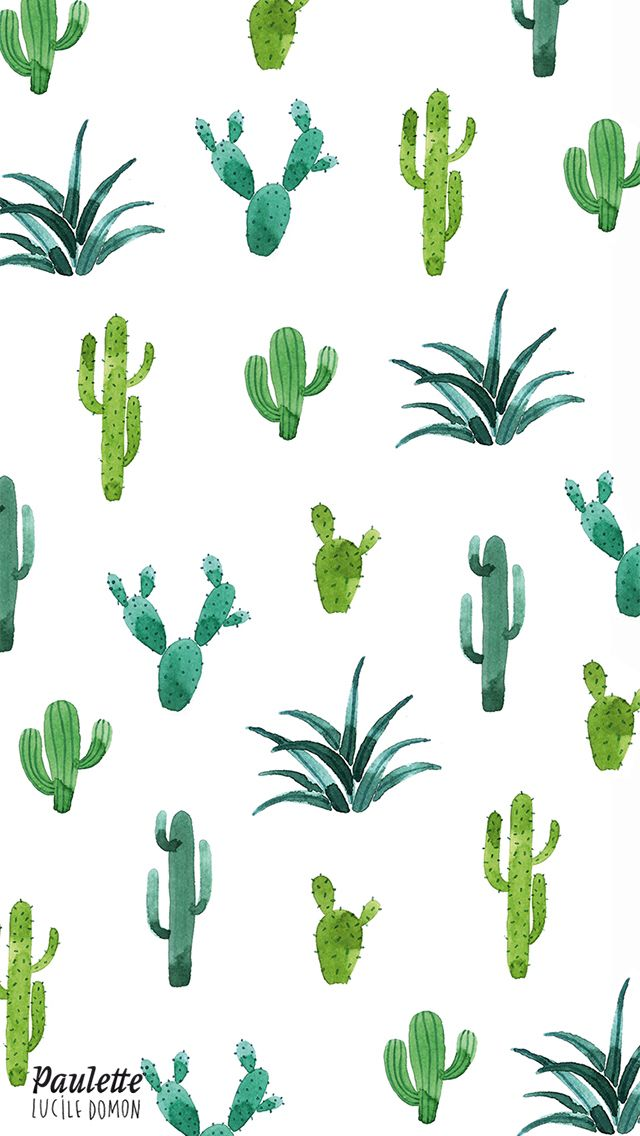 Cactus iPhone wallpaper