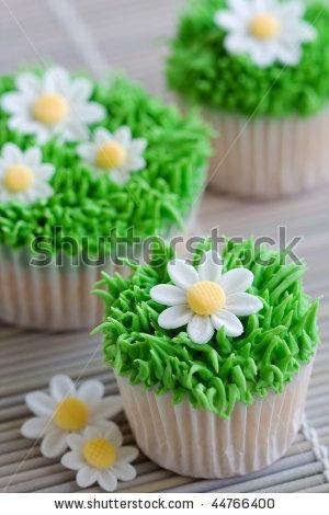 stock photo : Daisy cupcakes