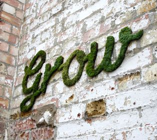 Moss Graffiti! All you do is blend 1.5 cups of buttermilk, a handfull of Moss, and a teaspoon of sugar until it is thick but easy to paint. Then spray it with water until it grows. CRAZY COOL!!!