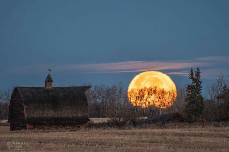Super Moon set this morning over a farmstead near Grande Prairie Alberta .  Feel free to share !