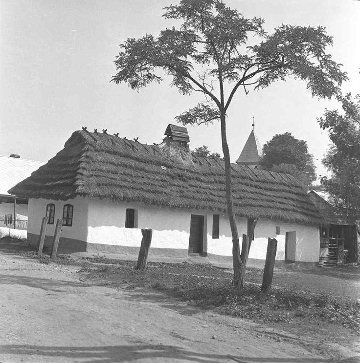 #Buzica #Abov #Slovensko #Словакия #Slovakia