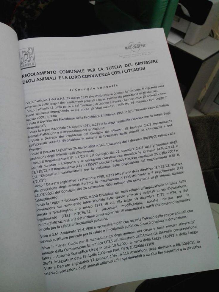"""Villaricca, M5S: protocollato  """"il regolamento comunale per la tutela del benessere degli animali e la loro convivenza con i cittadini"""""""