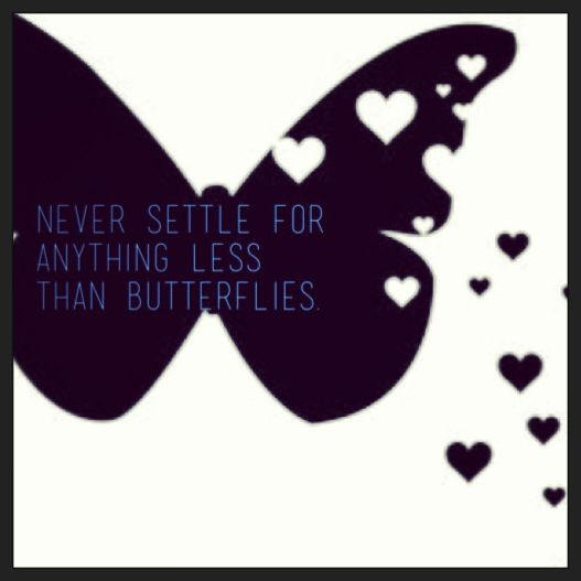 Never settle for anything less than butterflies. #love #advice