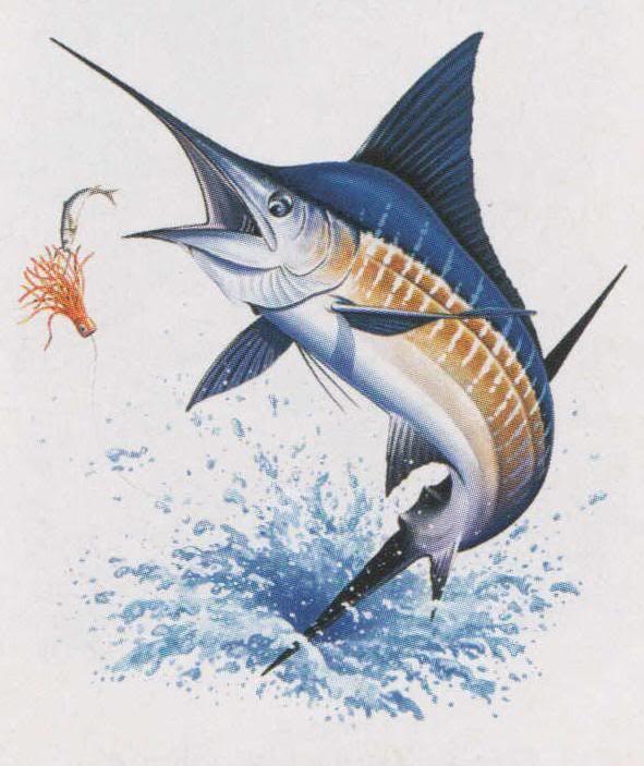 BIG BLUE MARLIN FISH MARINE CROSS STITCH PATTERN