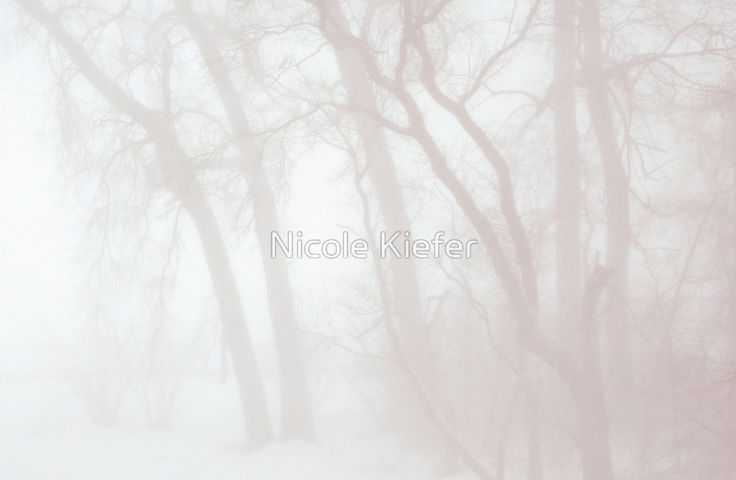 Whiteout during blizzard