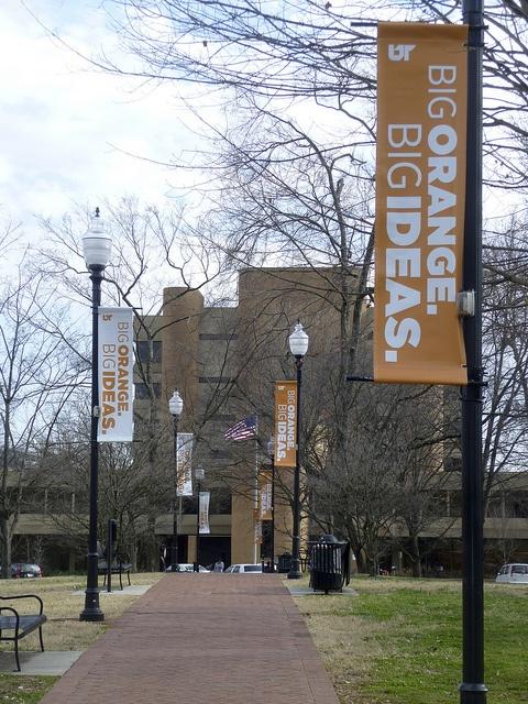 University of TN Knoxville, TN