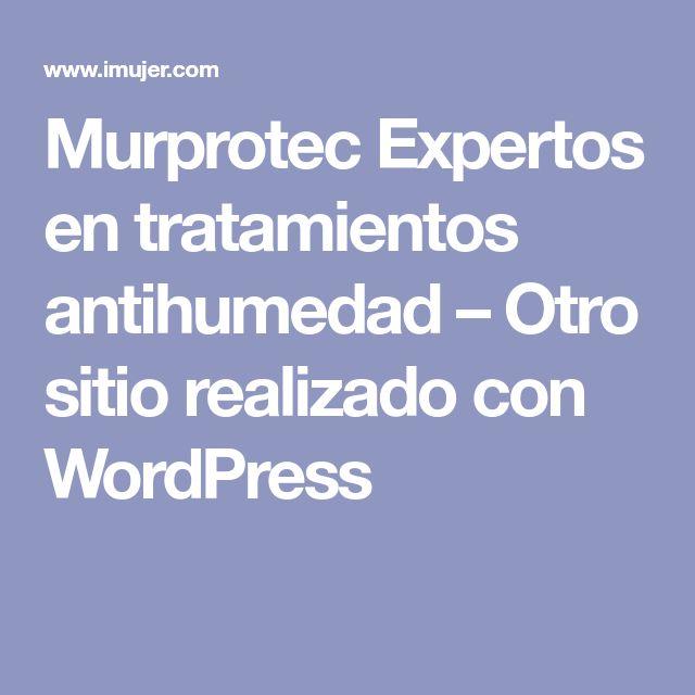 Murprotec Expertos en tratamientos antihumedad – Otro sitio realizado con WordPress