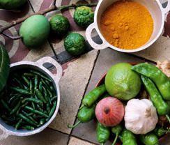 Ingrédients de base de la cuisine créole L'ail, les piments, les oignons, le gingembre et le citron Saint Joseph - Ile de la Réunion