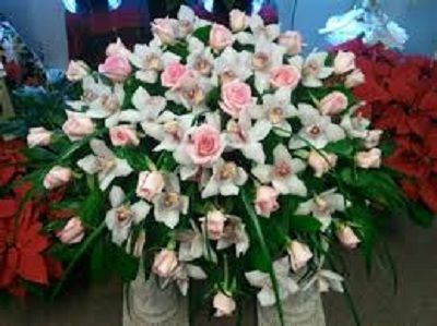 http://articles.org/info-on-simple-casket-spray-programs/  Look At This - Family Spray Casket  Funeral Casket Flowers,Casket Flower Arrangements,Casket Spray Flower Arrangements,Casket Sprays For Funerals,Casket Sprays For Men
