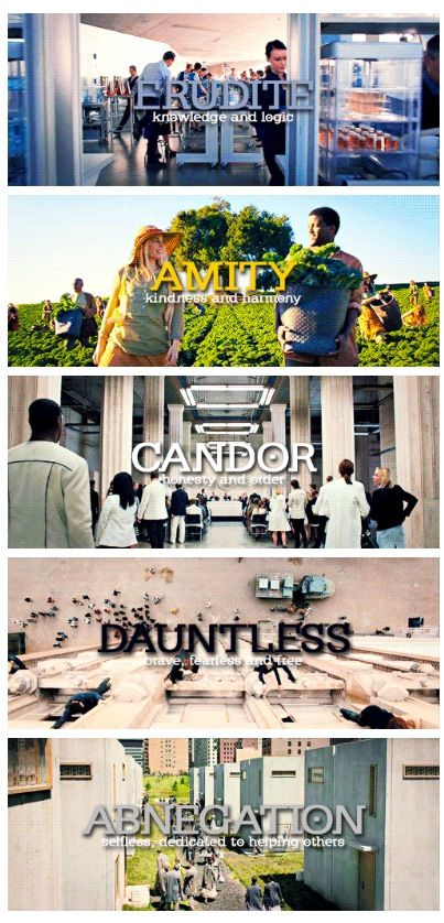 I'm Erudite and Dauntless. I even took a test and I couldn't agree more. What is your faction?
