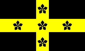 Flag of the See of St. David's and of St. David's College, my old University