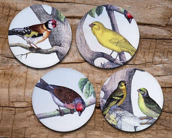 Bird Coaster Set of 4 - Vintage Birds - Drink coasters