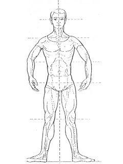 Segunda posición: Voltea los pies hacia afuera en línea recta, separándolos por treinta centímetros.