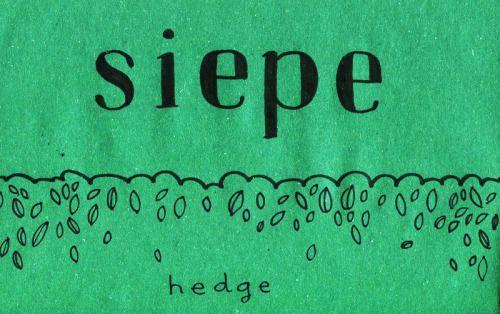 Learning Italian Language ~  Siepe (Hedge) IFHN