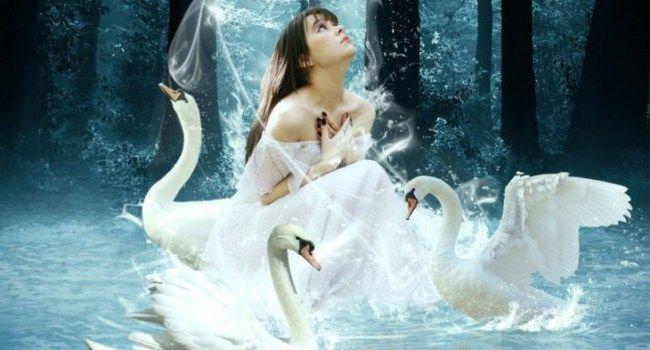 Форум: Настройка Белая Лебедь (1/1)
