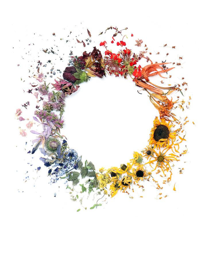 rainbow wreath | STILL (mary jo hoffman)