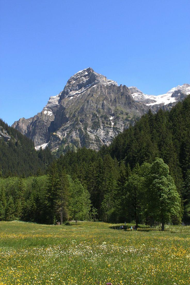 Switzerland, Switzerland, Steering, Ammertenhorn #switzerland, #switzerland, #steering, #ammertenhorn