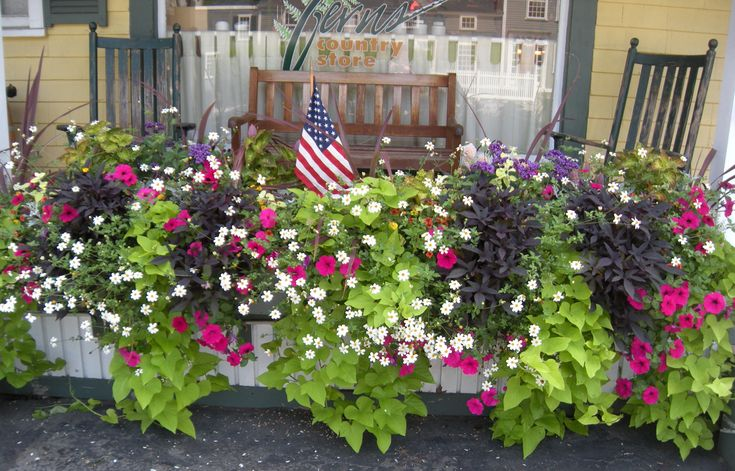 Flower Baskets For Railings : Country store front ferns gahdens