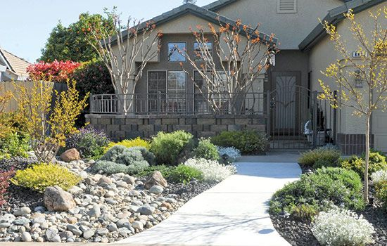 Dry stream bed and low growing shrubs make a low for No maintenance front yard