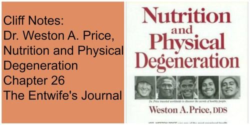 Best 24 nutrition and physical degeneration cliff notes ideas on cliff notes dr weston a price nutrition and visionherbs fandeluxe Choice Image