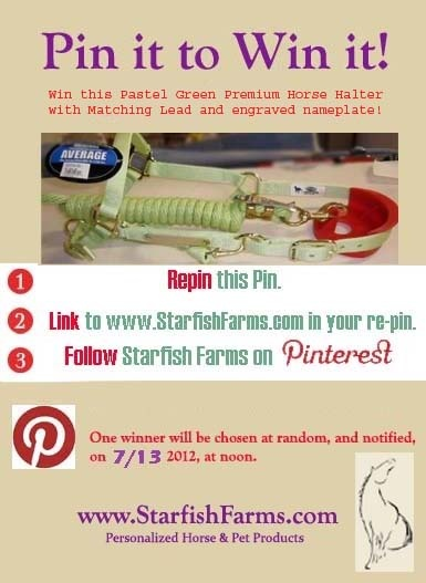 Only 3 more days until some lucky pinner will win this Premium Nylon Halter & Lead, with custom engraved nameplate ...  http://pinterest.com/pin/189010515581787255/