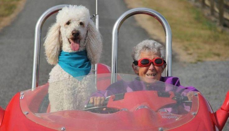 """Norma Jean Bauerschmidt foi diagnosticada com cancro aos 90 anos de idade, num exame de rotina (...)  Em vez de começar os tratamentos de quimioterapia, Norma contrariou todas as recomendações médicas, e decidiu juntar-se ao filho e à nora, que viviam na estrada, numa viagem pelos Estados Unidos em auto-caravana para desfrutar do seu último ano de vida. """"A vida é um balanço/Entre segurar e deixar partir."""""""