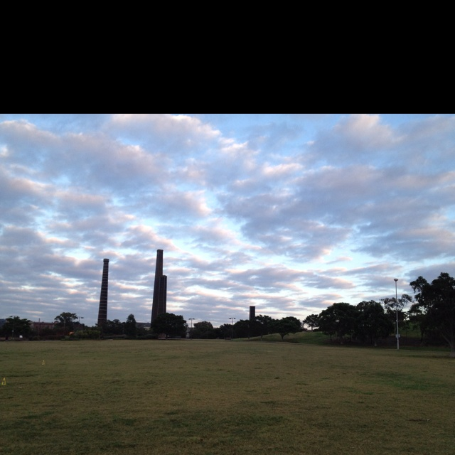 Outdoor bootcamp at sydney park