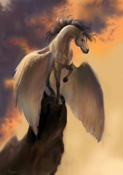 This is my pet Pegasus and her name is Jasmine- Gabrielle Cabin 4 Demeter