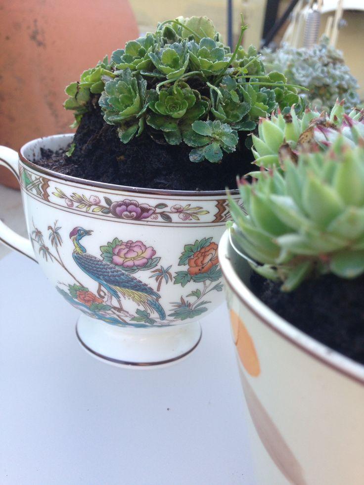 Repurposed vintage teacups   Vintage tea cups   Pinterest
