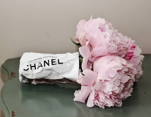 i ♥ pretty thingsPink Flower, Chanel, Inspiration, Dreams, Bouquets, Fashion Blog, Birds Of Paradise, Floral, Pink Peonies