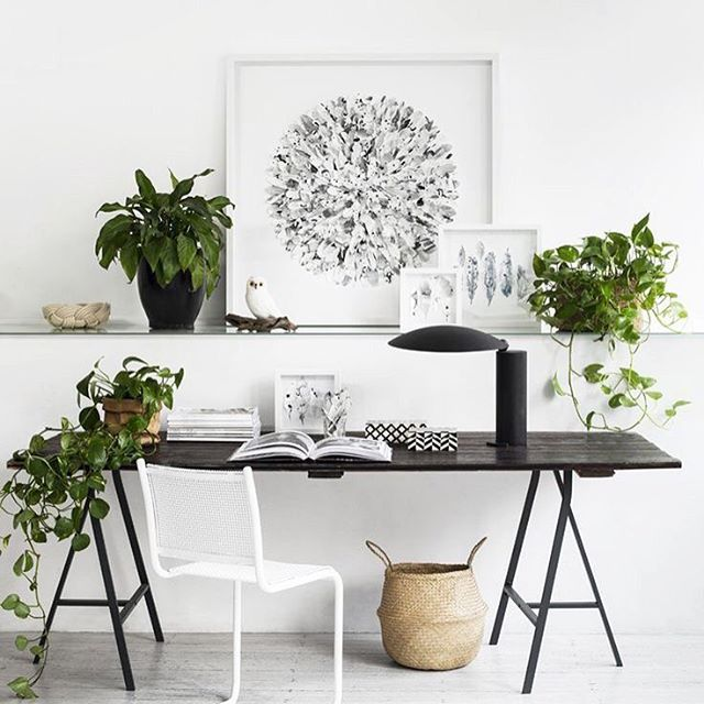 A perfect example of a lovely, clean and minimal work area! Its got everything you need and more! . . Decorate with framed images, plants, ceramics, as well as lamps and containers! And can we please talk about that little owl perched there? . . #homedecor #interiors #prints #frames #pinterest #ikea #minimal #sweden #prayingfornice #pokemongo #brexit #youtuber #alfie #etsy #fashion #white #design #plants #tyspaces #tys #lush #southpark #workarea #studyroom #chumbak