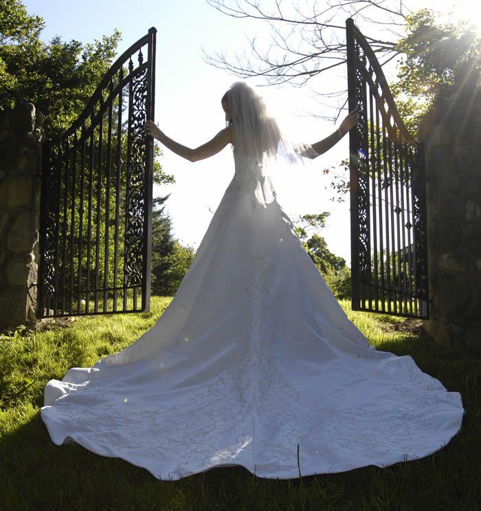 A252e1226fd6854eab6c74e0af6124c8 Wedding Rentals Victoria
