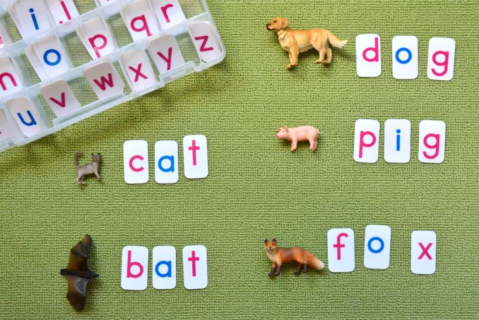 Movable Alphabet at How we Montessori - learning to read Montessori-style, writing first!