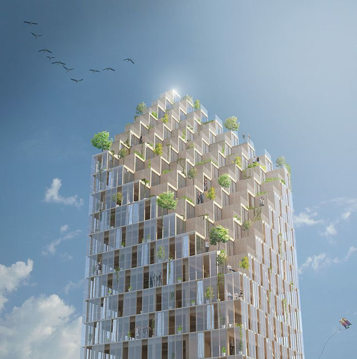 Feature> Timber Towers - The Architect's Newspaper