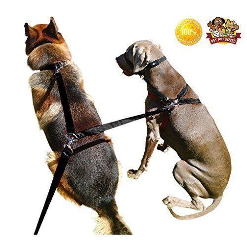 Dogs Double Clip Leash 8ft Dual Dog Training Leash Walk Together Pet Supplies  #DogLeash