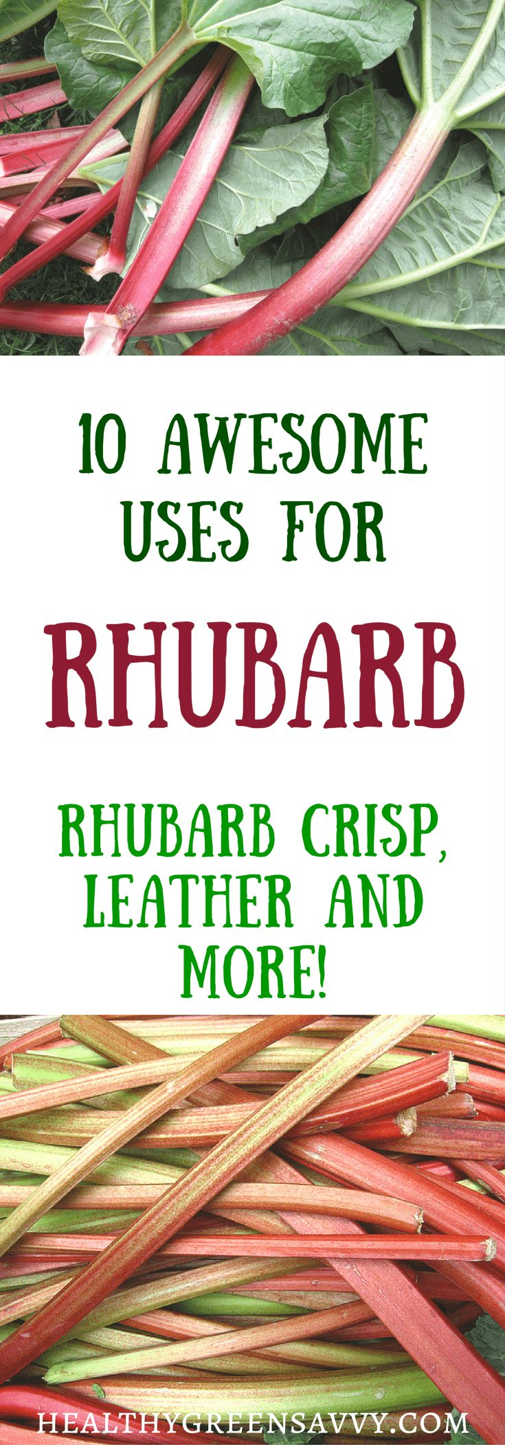 10 wonderful uses for rhubarb, a healthy, low-calorie vegetable used as a fruit. Click to read more or pin to save for later. | rhubarb recipes | healthy treats | edible landscaping | healthy food |