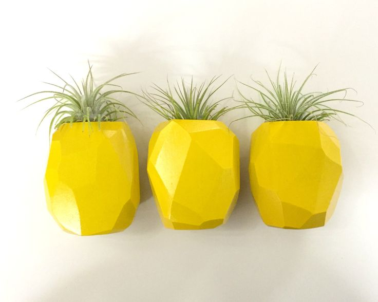 """Pineapple Planter Pineapple planters!!!  Be a pineapple: Sweet on the inside. Prickly on the outside. And don't forget your crown. :)  Available in a wall mounted or table version.  Measures approx. 3"""" tall.  Add an air plant (for pick-up only)!  Made by In The Rough in Ottawa, Ontario."""