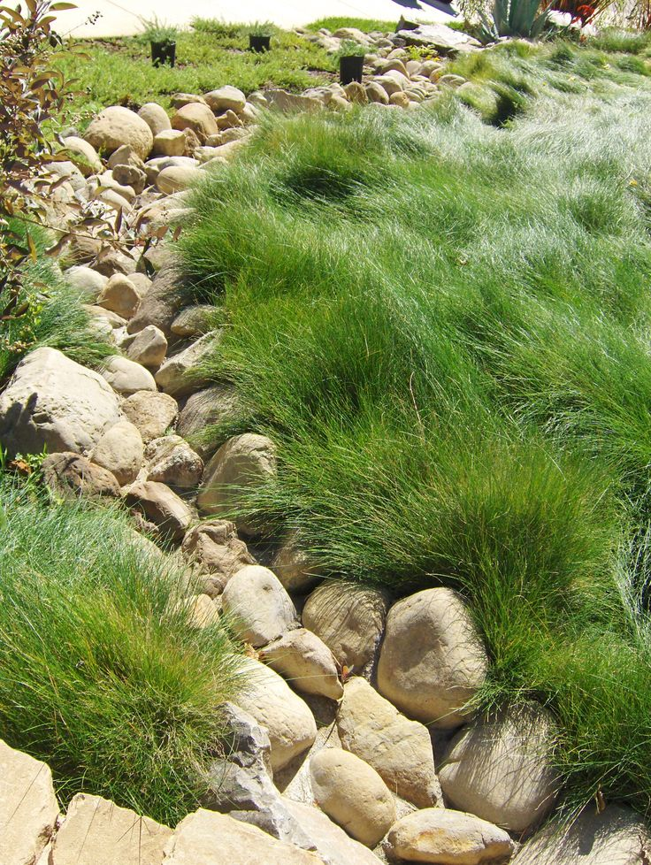 84 Best Dry River Bed Images On Pinterest Landscaping 400 x 300
