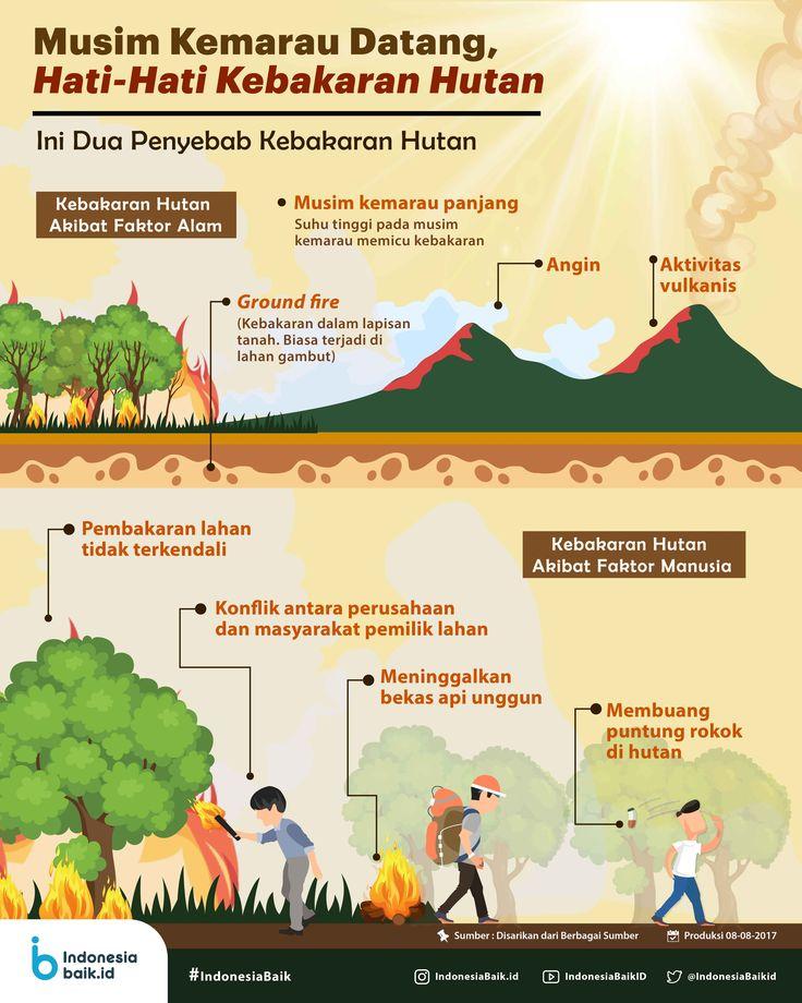 Musim Kemarau Datang, Hati-Hati Kebakaran Hutan | Indonesia Baik