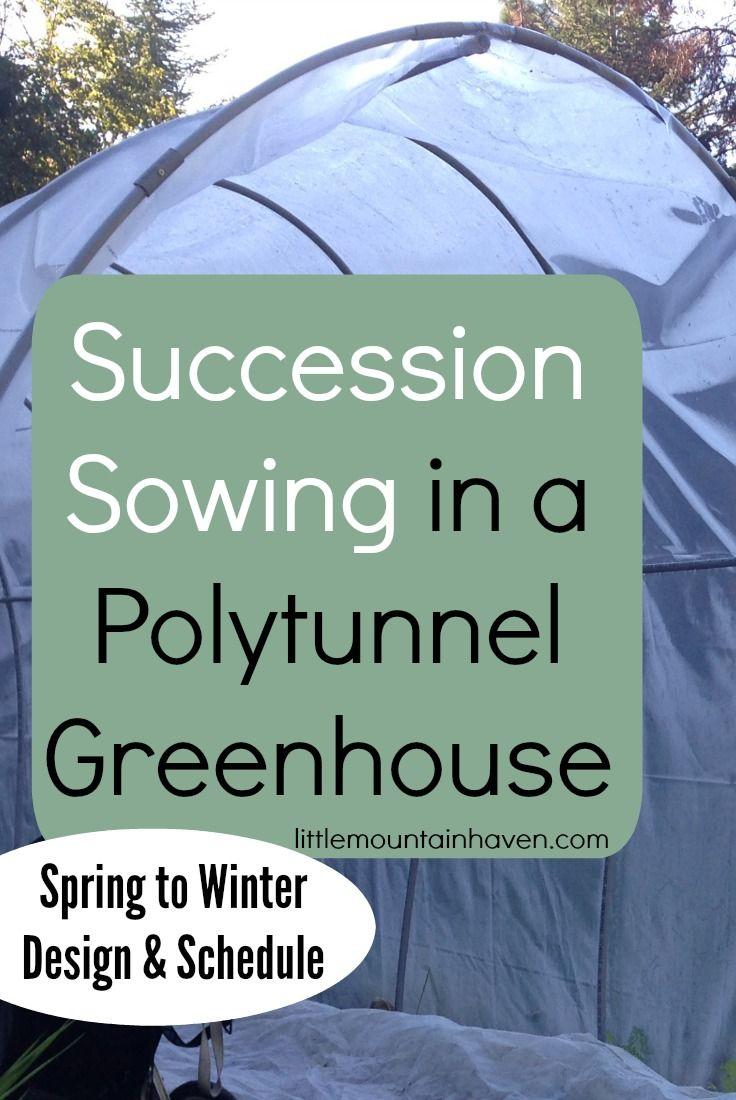 66 best gardening polytunnel images on pinterest gardening