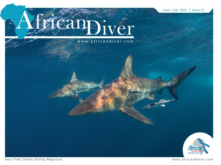 Issue 17: Download for free. http://africandiver.com/index.php/magazine/download-issues