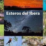 In Pictures: Antarctica, Patagonia, Iguazu, Ibera Wetlands and More