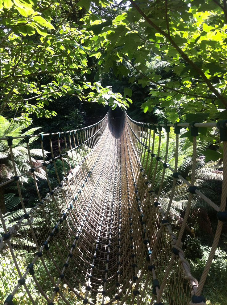 Eden project - Rope bridge