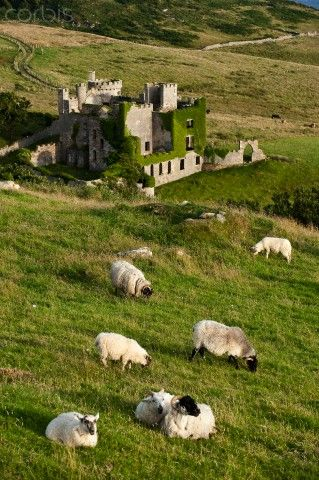 Republic of Ireland, Galway County, Connemara, castle at Clifden