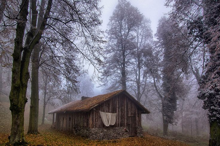Frosty Day 2 by CitizenFresh on DeviantArt