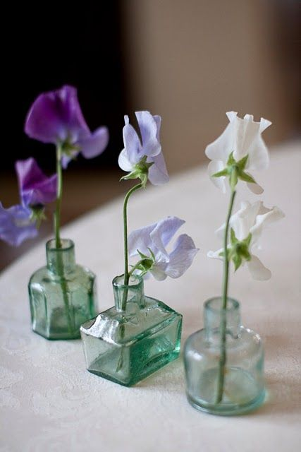 delicate sweetpeas